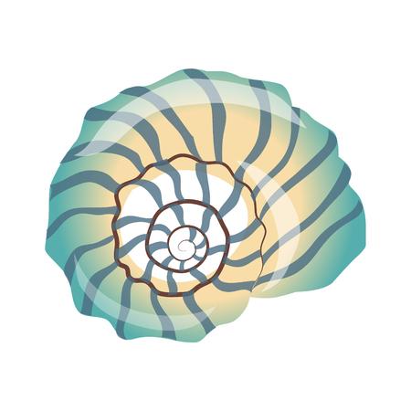 Beautiful blue seashell, an empty shell of a sea mollusk. Colorful cartoon illustration Illustration