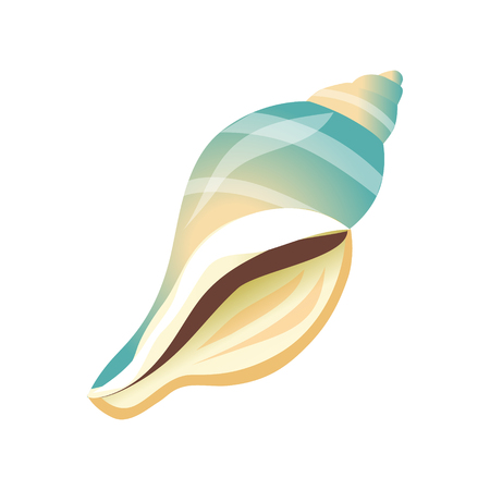 Smooth white and blue sea shell, an empty shell of a sea mollusk. Colorful cartoon illustration Illustration
