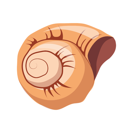 oceanic: Spiral snail house or shell, an empty shell of a sea mollusk. Colorful cartoon illustration