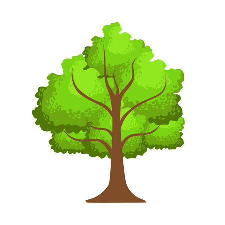Tree with green leaves, element of a landscape. Colorful cartoon vector Illustration