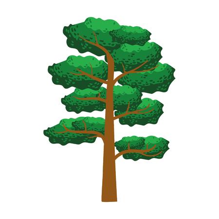 Pine tree, element of a landscape. Colorful cartoon vector Illustration Иллюстрация