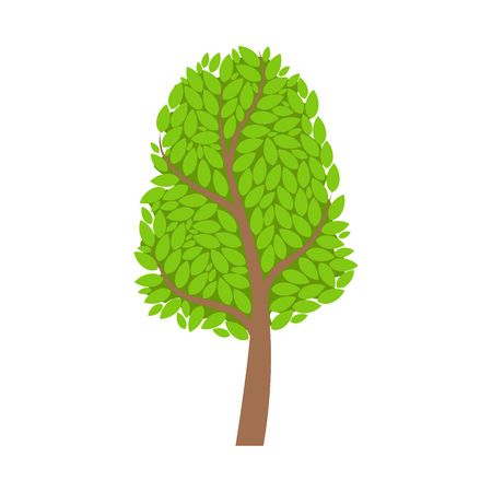 Season tree with green leaves, element of a landscape. Colorful cartoon vector Illustration