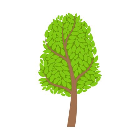 Season tree with green leaves, element of a landscape. Colorful cartoon vector Illustration Reklamní fotografie - 76971811