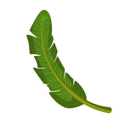 Green palm leaf. Colorful cartoon vector Illustration