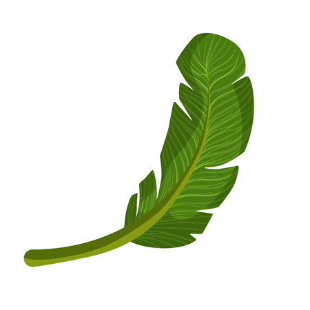 breezy: Exotic palm green leaf. Colorful cartoon vector Illustration Illustration