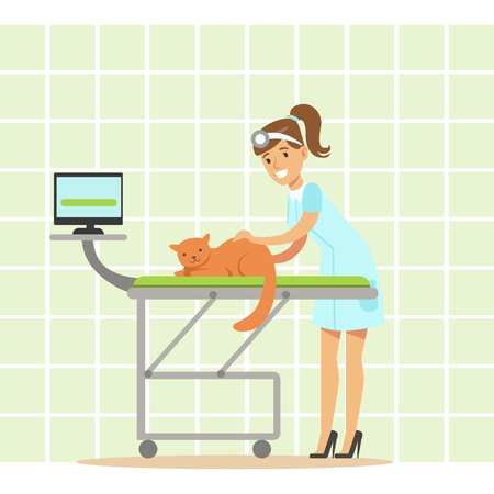 Smiling Female veterinarian examining cat in vet clinic. Colorful cartoon character Illustration isolated on a white background