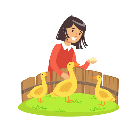 caress: Cute little girl feeding ducks with grain in a mini zoo. Colorful cartoon character vector Illustration isolated on a white background