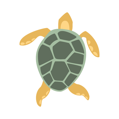 Yellow And Grey Turtle, Part Of Mediterranean Sea Marine Animals And Reef Life Illustrations Series. Aquarium Element Isolated Stylized Icon, Underwater Inhabitant Artistic Sticker.