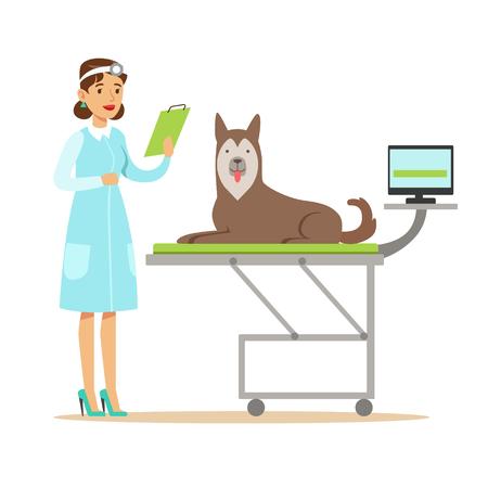 Sonriente veterinario veterinario examinando perro en la clínica de veterinario. Personaje de dibujos animados de colores Foto de archivo - 78100489