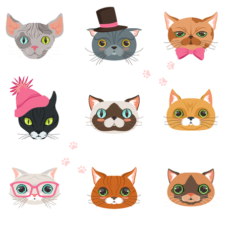 Set of funny cats heads of different breeds, colorful character vector Illustrations isolated on a white background
