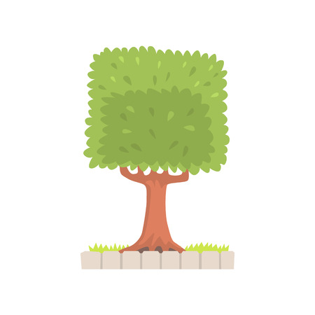 Green tree with a square crown vector Illustration Reklamní fotografie - 79332217