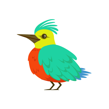 Small bird with turquoise wings, long nose and a tuft colorful vector Illustration isolated on a white background