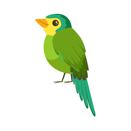 Small bird in blue and green colors colorful vector Illustration isolated on a white background