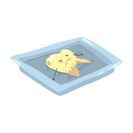 aching: Funny extracted dead tooth lying on a steel tray cartoon vector Illustration isolated on a white background Illustration