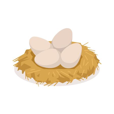 Chicken eggs in the nest, poultry breeding vector Illustration Ilustração