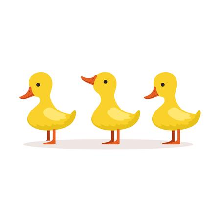 Tres personajes de patitos de dibujos animados lindo parado uno tras otro vector Foto de archivo - 80508958
