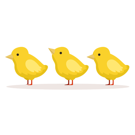 Three cute chickens standing one after another vector Illustration