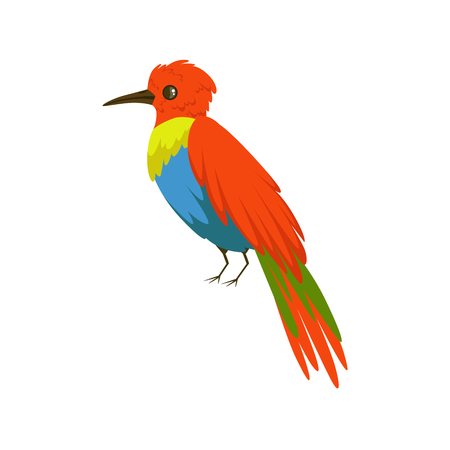Colorful bee eater bird vector Illustration