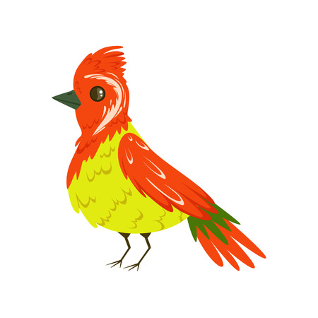 Bright colorful bird with a tuft vector Illustration Illustration
