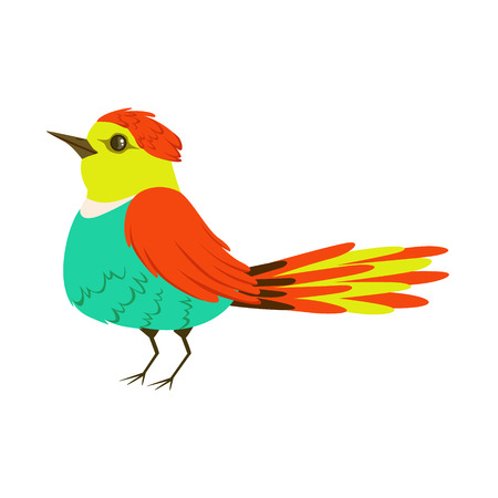 Small colorful tropical bird vector Illustration