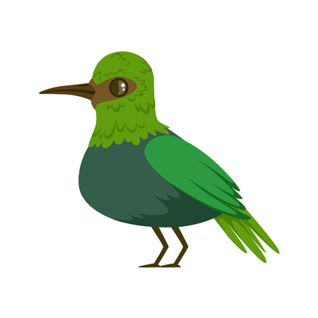 Small bright green tropical bird colorful vector Illustration