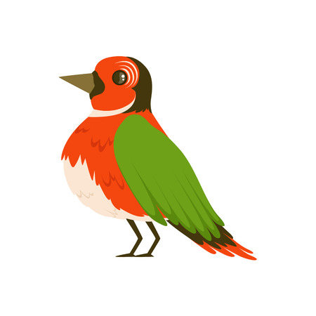 Colorful bird vector Illustration