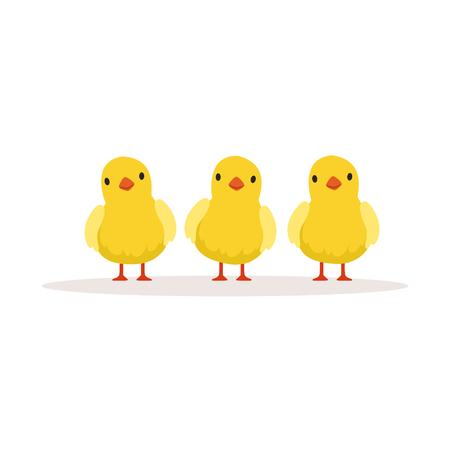 3 つのかわいい鶏ベクトル イラスト