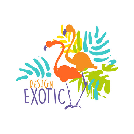 Exotic design with flamingo birds colorful hand drawn vector Illustration