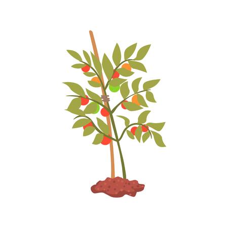 Jonge boom plant in de grond cartoon vector illustratie Stock Illustratie