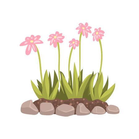 Flowers growing in the flowerbed cartoon vector Illustration