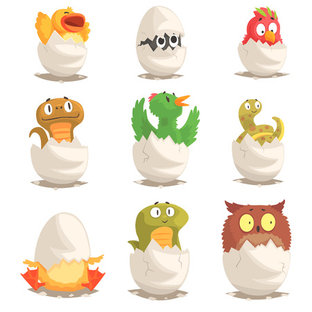 Birds and reptiles hatch from eggs set, unborn animals vector Illustrations Иллюстрация