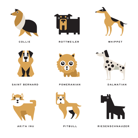 akita: Collection of different dogs breeds characters and lettering breed in English vector Illustrations