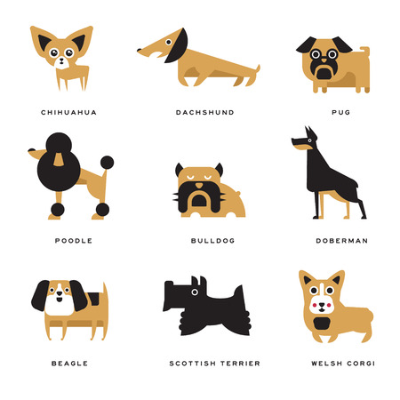 Different dogs breeds characters set of vector Illustrations and lettering breed in English Vettoriali