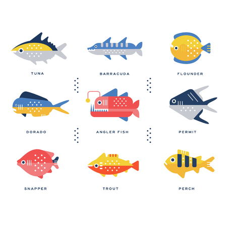freshwater barracuda: Collection of sea and river fish and lettering name in English vector Illustrations
