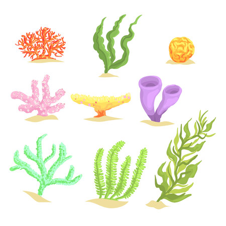 Set of cartoon underwater plants, seaweeds and aquatic marine algae vector Illustrations Illusztráció