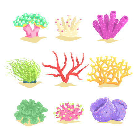 Underwater plants set, seaweeds and aquatic marine algae vector Illustrations Ilustracja