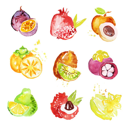 Set of colorful watercolor fruits vector Illustrations Ilustração