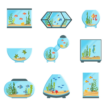 Aquarium tanks set, different types of aquariums with plants and fish detailed vector Illustrations on a white background Illustration
