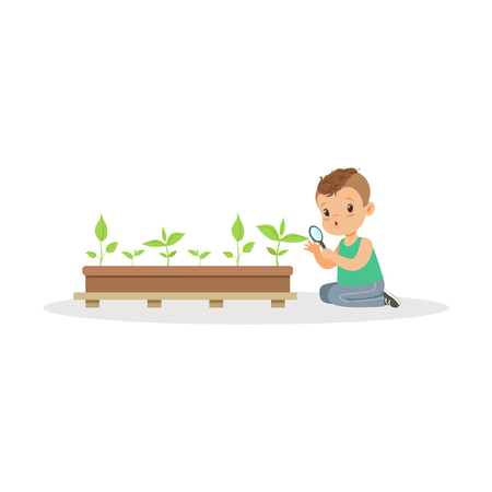 Cute little boy examining plants through a magnifying glass, lesson of botany in kindergarten cartoon vector Illustration on a white background Illusztráció