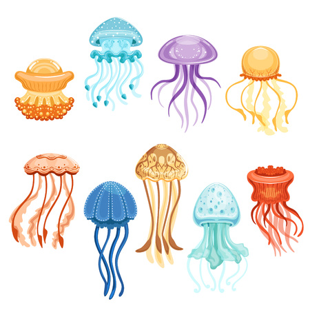 Colorful jellyfish set, swimming marine creatures watercolor vector Illustrations on a white background Vettoriali
