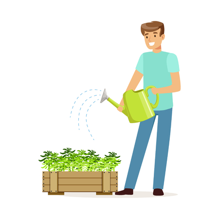 Young smiling man watering plants in wooden box, house husband working at home vector Illustration on a white background