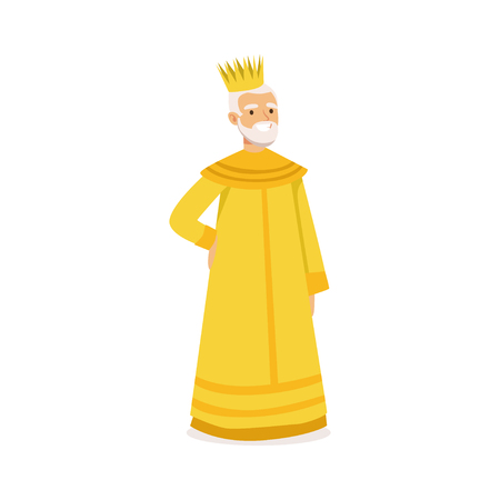 Majestic king, fairytale or historical character colorful vector Illustration on a white background
