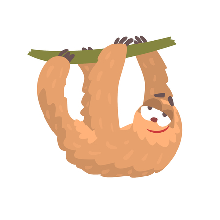 Cute cartoon sloth character hanging on a tree branch, funny tropical animal vector Illustration