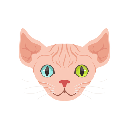 Cute sphinx cat with eyes of different colors, funny cartoon animal character vector illustration Illustration