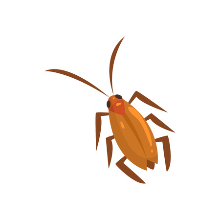 Brown cockroach insect cartoon vector illustration