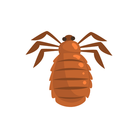 Louse insect parasite cartoon vector illustration Illustration