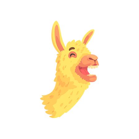Funny laughing llama character, cute alpaca animal cartoon vector Illustration Illustration