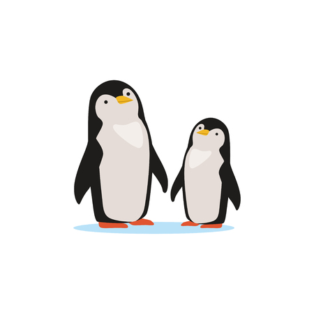 Couple of penguins sitting on an ice, Arctic fauna species vector Illustration Çizim