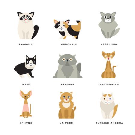 Flache häusliche Katzenrassen Vektorgrafik
