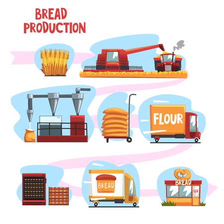 Production of bread from wheat harvest to to freshly baked bread in shop set of cartoon vector Illustrations